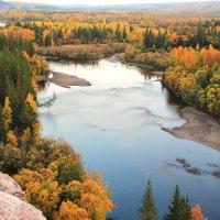 жёлтая осень Сибири... :: Александр