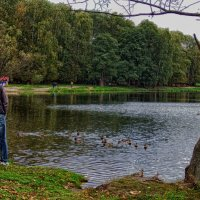 Осенний парк.(2) :: Лара ***