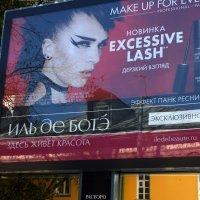 Где живет красота? ...или бесплатная реклама мансарды... :: Владимир Безбородов