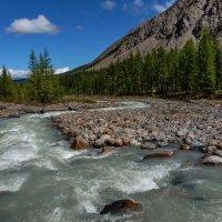 Северо-Чуйский хребет. Река Актру :: Виктор Четошников