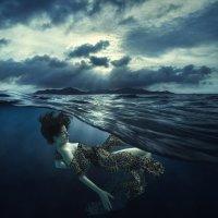 dream :: Дмитрий Лаудин