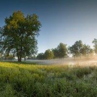 Майское утро :: Михаил Корнилов