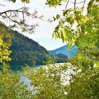 """Вид с горы на озеро """"Рица"""". Абхазия. :: Александр Максименко"""