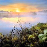 Утро воскресного дня.... :: Андрей Войцехов