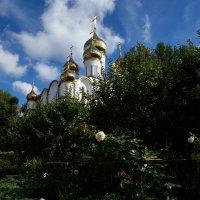 Никольский монастырь в Переславле Залесском :: Александра
