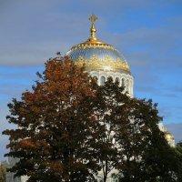 """скоро """"золотая осень"""" :: sv.kaschuk"""