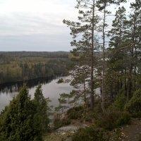 На горе Хауккавуори. Финляндия :: Марина Домосилецкая