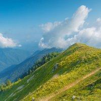 Гора Мамдзышха, Абхазия :: Кирилл Малов