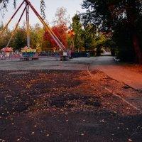 листья опали уже :: Света Кондрашова