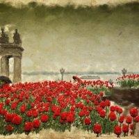 а просто майский дождь прошел... :: Андрей Куницын