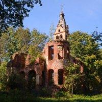 Руины купеческой усадьбы :: Наталья Левина