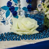 Свадебная красота :: Александр Швецов