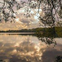 Осень на озере :: Наталья Лакомова