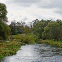 Сильное течение небольшой реки.. :: марк