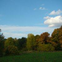 Осень... :: марина ковшова
