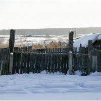 Деревня Голдобино :: Александр Максимов