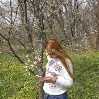 весна :: Аркадий