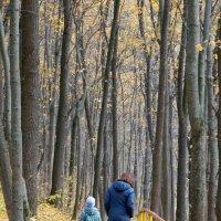 Ушли в осень... :: Екатерина и Иван Гирда