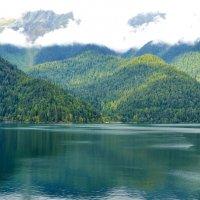 Озеро Рица :: Владимир Болдырев