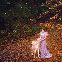 Осень :: Наталья Петрова