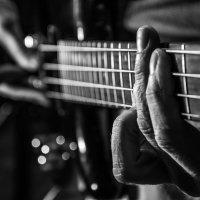 Гитарист :: Иван Столяров