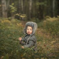 Тихо в лесу :: Anna Lipatova