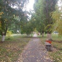 В парке :: Наталья А
