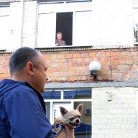 мужчина с собачкой :: Vetrapul Veremej