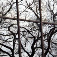 ритмы города-кажется дождь :: Олег Лукьянов