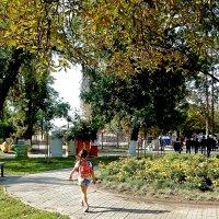 Октябрь в парк пришел :: Владимир