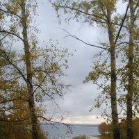 Вот и сентябрь ушел... :: Tatyana Kuchina