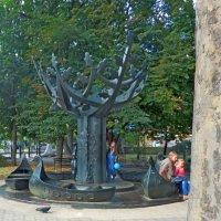 дерево :: Люша
