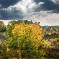 Краски осени... :: Влад Никишин