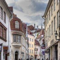 Прогулки по старому Таллину :: Michael & Lydia Militinsky