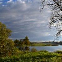 Тени осеннего дня. :: zoja