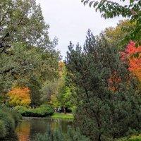Японский садик. :: Larisa Ereshchenko