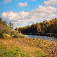 Первый денек октября.Тверца.Осень золотая. :: Павлова Татьяна Павлова