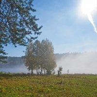 Туман и солнце..Кто кого? :: Анатолий Иргл