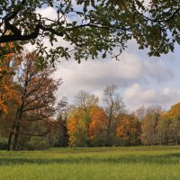 Осень в парке Царского села :: Наталья