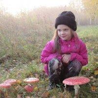 Охота на грибы :: Анна Другова