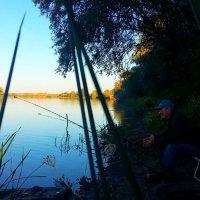 Идеальный Астраханский пейзаж :: Алена