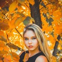 осень наступила... :: Anastasia Silver