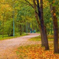 В осеннем парке 5 :: Виталий