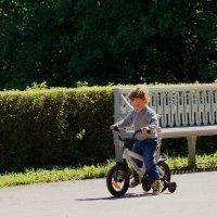 Солнечный мальчик :: Ирина Шурлапова