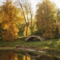 Осень. Парк. :: Елизавета Вавилова