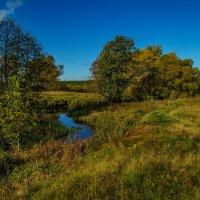 Осень 2016 река Дрезна :: Андрей Дворников