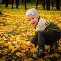 Осень пришла :: Алексей Леухин
