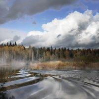 Осень в разливе. :: Георгий Рябов
