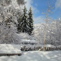 Первый снег - 3 ... :: 7zan0z