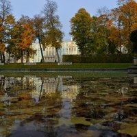 Пушкинская осень. На восходе.... :: Юрий Цыплятников